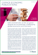 Focus-CEE-insolvencies